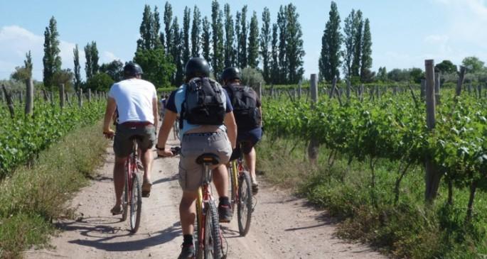 vinedos-en-bicicleta-750x400